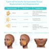 Types of fat graft