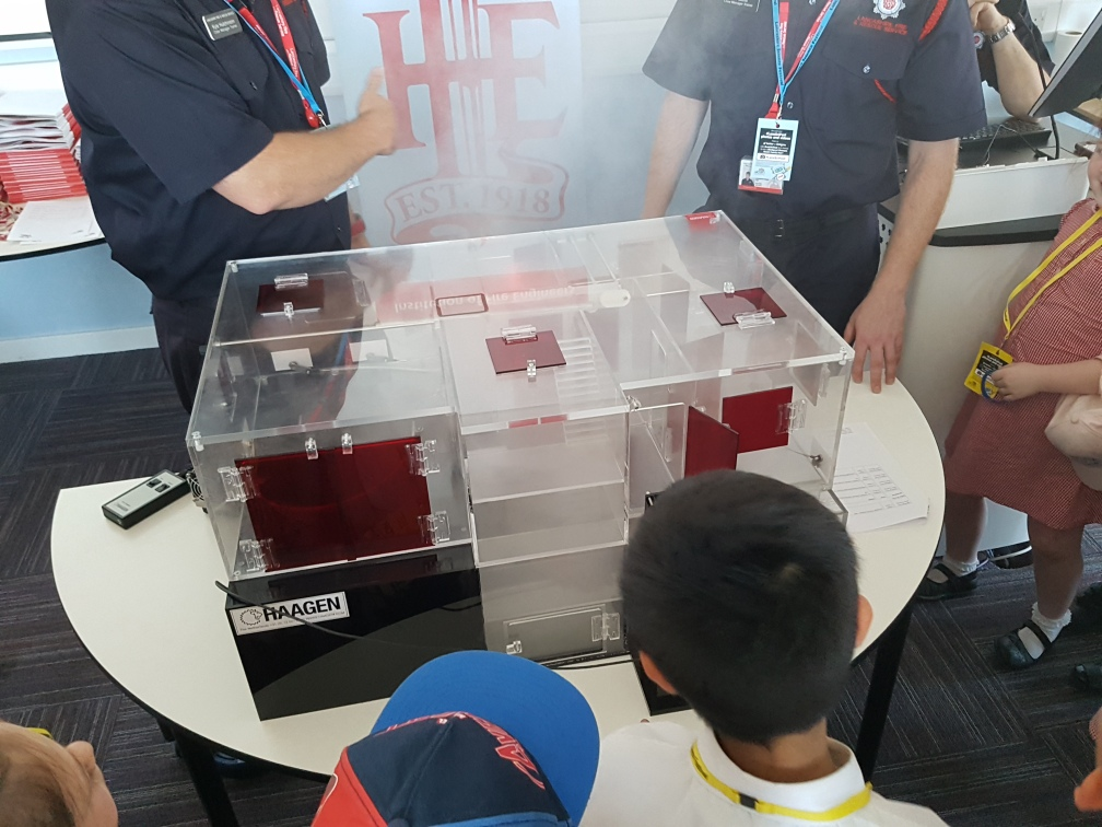 smoke simulator in house